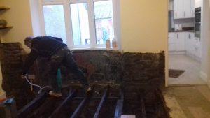 pauls plastering treating dry rot